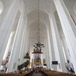 baziliko1